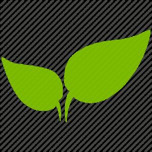 plant-512